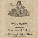 Stare druki – książki wydane w latach 1595-1800