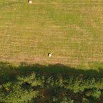 Obszar ziemi łąk, pastwisk, upraw i lasów Stacji Badawczo-Dydaktyczna w Radomierzu